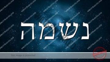 Kabbalah teaches the secrets that lay within your name  – Rabbi Alon Anava