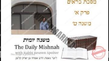 Kilayim Chapter 1 Mishnah 9