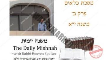 Kilayim Chapter 2 Mishnah 11