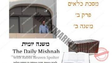 Kilayim Chapter 2 Mishnah 2