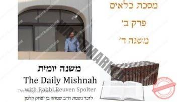 Kilayim Chapter 2 Mishnah 4