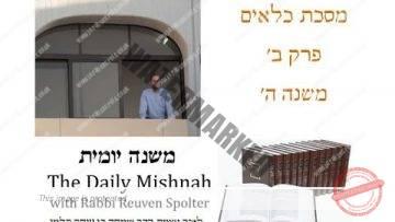 Kilayim Chapter 2 Mishnah 5