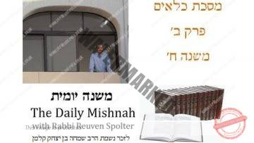 Kilayim Chapter 2 Mishnah 8
