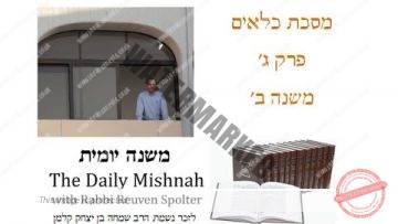 Kilayim Chapter 3 Mishnah 2