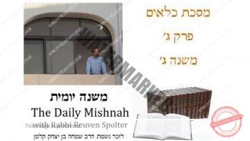 Kilayim Chapter 3 Mishnah 3