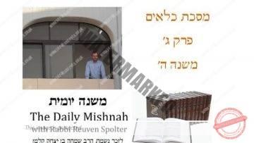 Kilayim Chapter 3 Mishnah 5