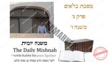 Kilayim Chapter 3 Mishnah 6
