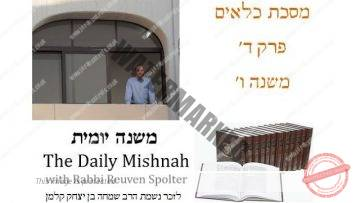 Kilayim Chapter 4 Mishnah 6