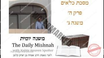 Kilayim Chapter 5 Mishnah 3