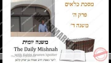 Kilayim Chapter 5 Mishnah 4