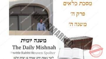 Kilayim Chapter 5 Mishnah 5