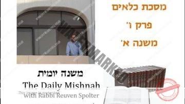 Kilayim Chapter 6 Mishnah 1