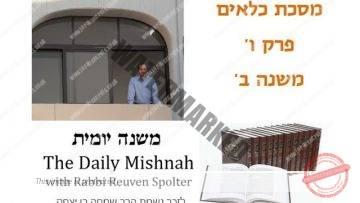 Kilayim Chapter 6 Mishnah 2
