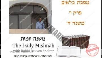 Kilayim Chapter 6 Mishnah 5
