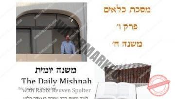 Kilayim Chapter 6 Mishnah 8