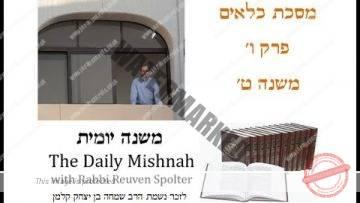 Kilayim Chapter 6 Mishnah 9