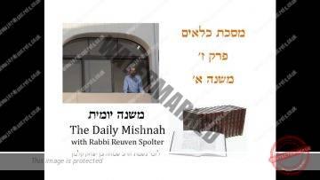 Kilayim Chapter 7 Mishnah 1
