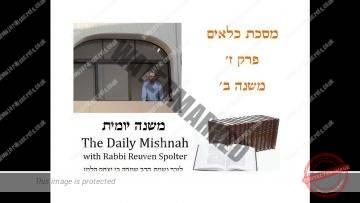 Kilayim Chapter 7 Mishnah 2