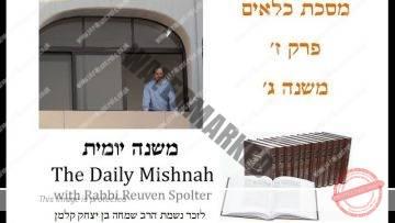 Kilayim Chapter 7 Mishnah 3