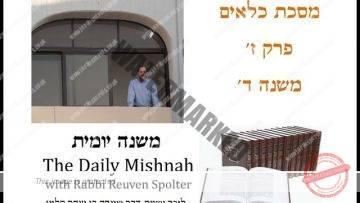 Kilayim Chapter 7 Mishnah 4
