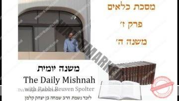 Kilayim Chapter 7 Mishnah 5