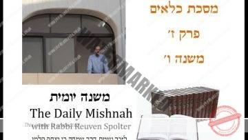 Kilayim Chapter 7 Mishnah 6