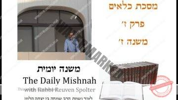 Kilayim Chapter 7 Mishnah 7