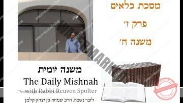 Kilayim Chapter 7 Mishnah 8