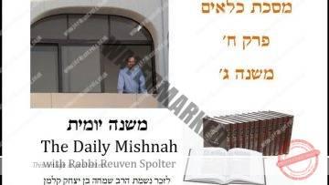 Kilayim Chapter 8 Mishnah 3