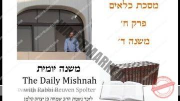 Kilayim Chapter 8 Mishnah 4