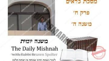 Kilayim Chapter 8 Mishnah 5