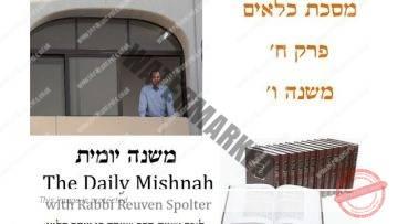 Kilayim Chapter 8 Mishnah 6