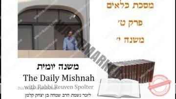Kilayim Chapter 9 Mishnah 10