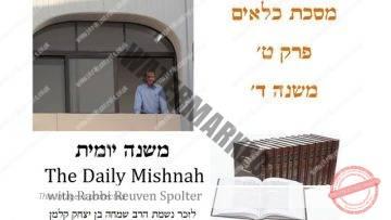 Kilayim Chapter 9 Mishnah 4