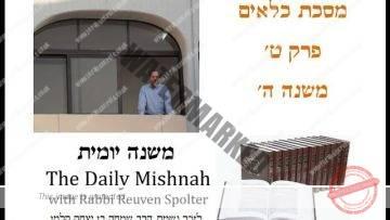 Kilayim Chapter 9 Mishnah 5