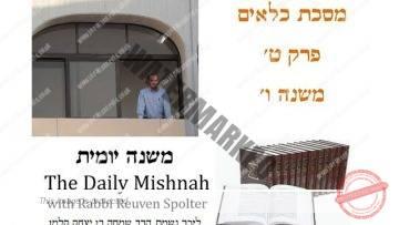 Kilayim Chapter 9 Mishnah 6