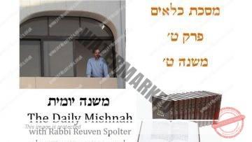 Kilayim Chapter 9 Mishnah 9