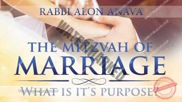 Love And Marriage – Whats its purpose? – Rabbi Alon Anava