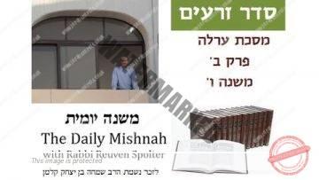 Orlah Chapter 2 Mishnah 6
