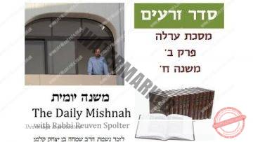 Orlah Chapter 2 Mishnah 8