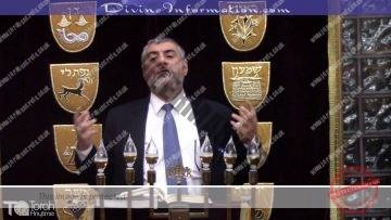 Parashat Emor – Animals Suffering, Women Right, Isis, Women In The Army, Assimilation, Intermarriage