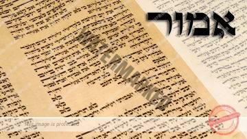 Parashat Emor – Does G-d need a vacation? – Rabbi Alon Anava