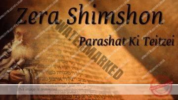 Parashat Ki Teitzei – Zera Shimshon – When you go to war… – Rabbi Alon Anava