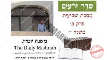 Sheviit Chapter 2 Mishnah 10