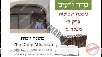 Sheviit Chapter 8 Mishnah 2