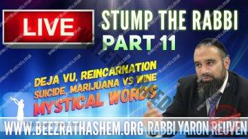 STUMP THE RABBI 11 Deja Vu, Reincarnation, SUICIDE, Marijuana vs WINE, Mystical Words