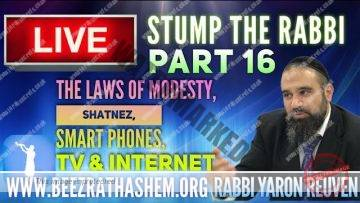 STUMP THE RABBI PART16 The Law of Modesty, Shatnez, Smart Phones, TV & Internet