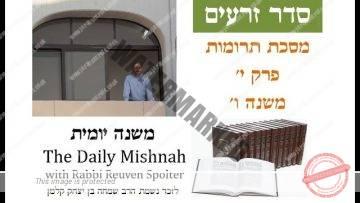 Terumot Chapter 10 Mishnah 6