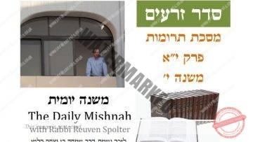 Terumot Chapter 11 Mishnah 10