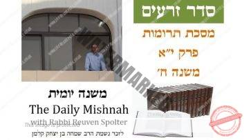Terumot Chapter 11 Mishnah 8